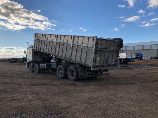 Camion Pegaso Mercofran (18)